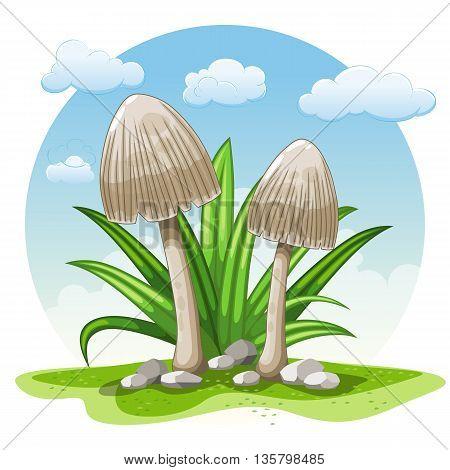 Illustration of cartoon mushrooms against white background