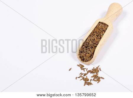 Ground Cumin In A Spoon.