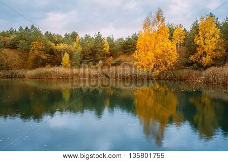 Beautiful Lake Or River And Forest. Autumn Landscape.