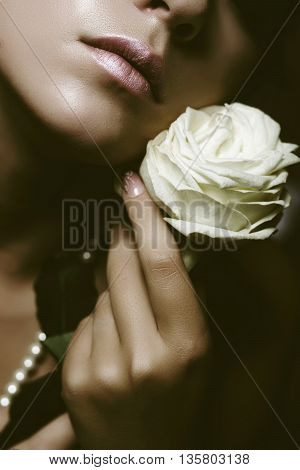 woman holding a white rose besideher cheeks