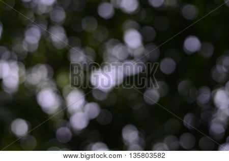 Black and white bokeh abstract light background.