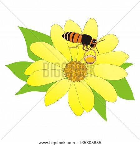 Illustration honey bee collecting nectar from a yellow flower