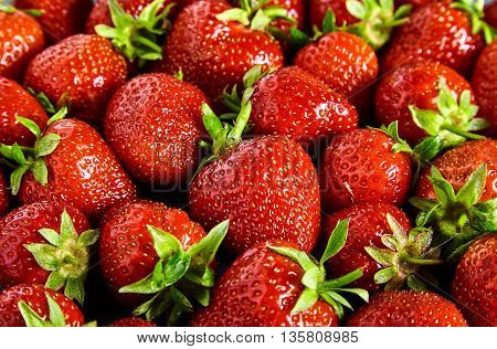 Fresh red strawberry background with green tail. Texture of many strawberry on table. Top view
