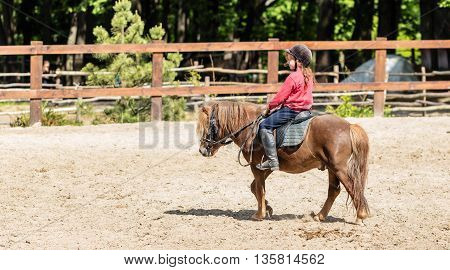 Horseback riding lovely equestrian - little girl is riding a horse