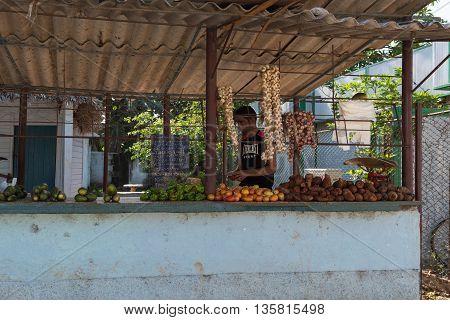 HAVANA, CUBA -JUNE 27, 2015: Cuban street vendor in Havana city with his range of fruit and vegetables