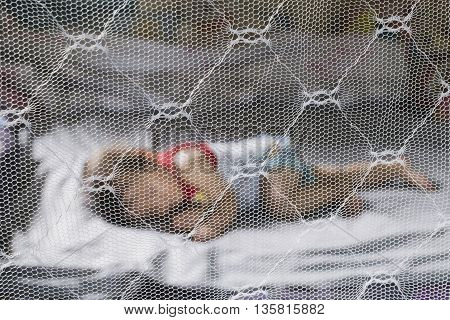 Child sleeping under mosquito net , provides mosquito nets to protect evacuees from dengue fever