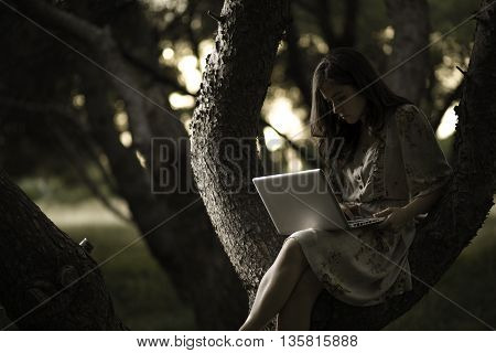 Woman with Laptop Sitting on a Pine Tree in the Woods