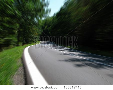 an image of a road surrounded by trees. where nature can breathe