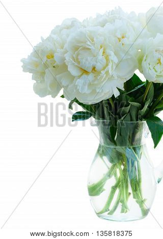 White peony flowers bouquet in vase close up isolated on white background