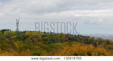 Beautiful nature in a park with colorful trees and sunlight. autumn natural background