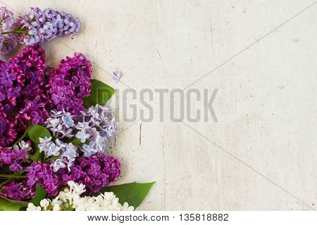 Border of of fresh lilac flowers on white aged wooden background with copy space