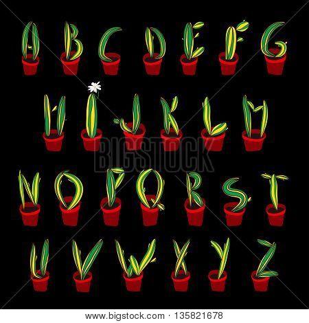 Cactus Alhpabet. Botanical Letter For Design