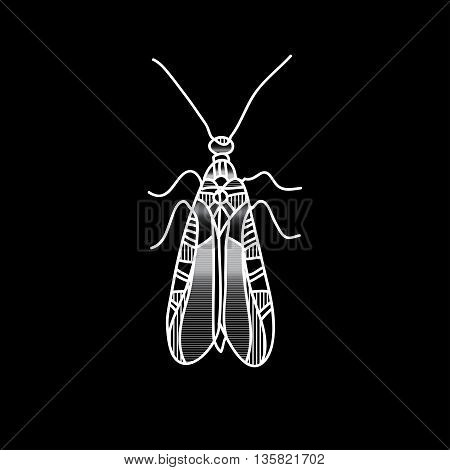 Vector beetle. Beautifully ornated insect. Monochrome metallic  butterfly for design
