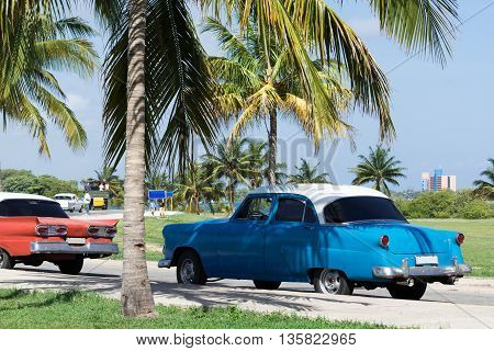American classic cars parked under palms in Varadero Cuba