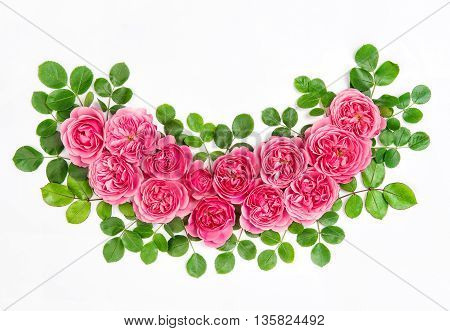 Pink roses with green leaves isolated on white background. Beautiful pink flowers bouquet