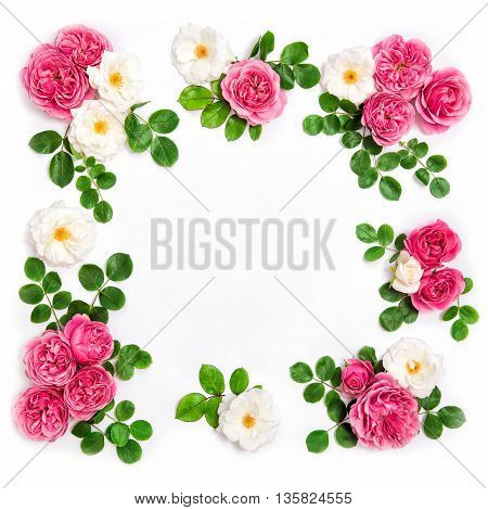 White and pink rose flowers with green leaves. Floral flat lay background