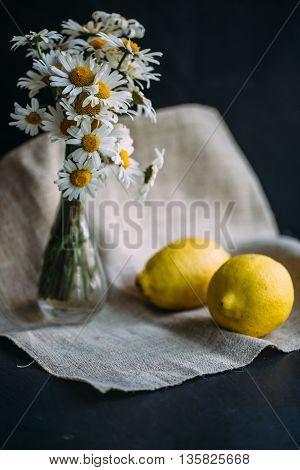 yellow lemons with fresh chamomile flowers. still life