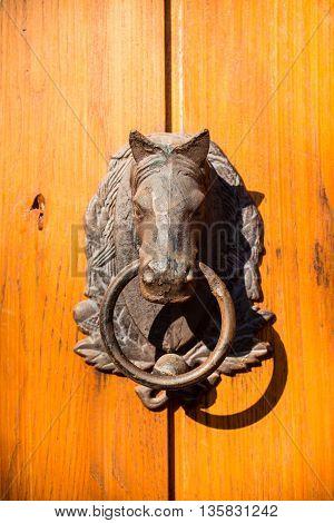 Door knocker in the shape of a horse on old wood door