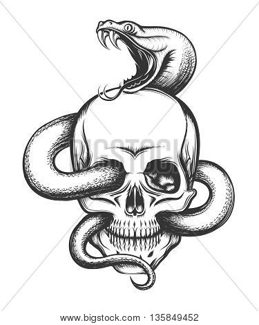 Human skull with crawling snake. Illustration in engraving style.