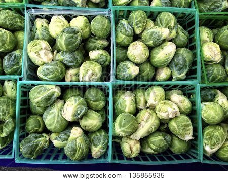 boxes of brussels sprouts from the farmers market
