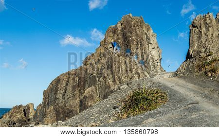 Man climbing up Devils Gate rock Te Kopahou Reserve on the south coast of New Zealand.