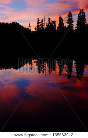 Pink and Blue Sunset and Trees Reflected in Alpine Lake. Olympic National Park, Washington