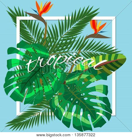 Tropical leaves. Floral design background, hand lettering tropical