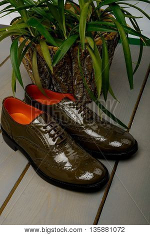 Green lacquered oxford shoes on wooden background near flowerpot. Back view. Close up.