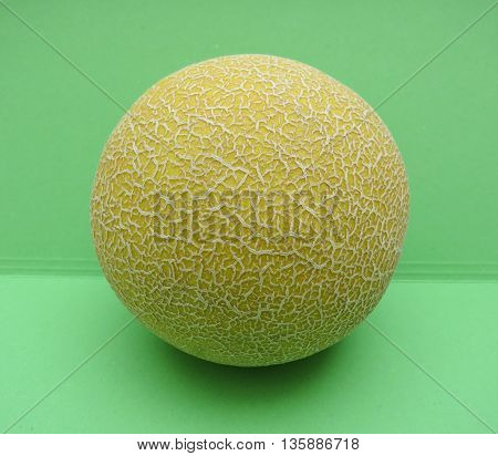Melon Galia Fruit