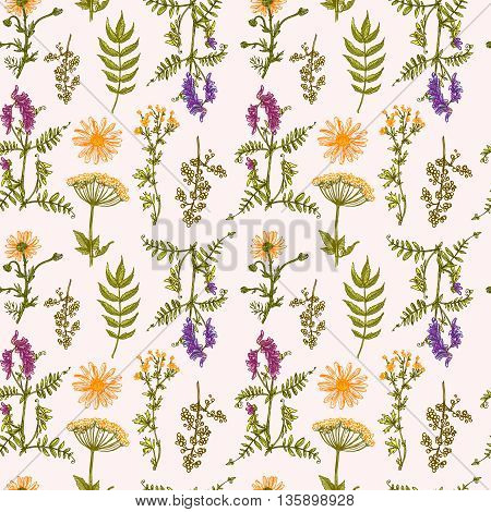 Beautiful hand drawn seamless pattern boho flowers. Flowers for boho-style  wedding invitations, boho prints. Decorative floral illustration with wildflowers.