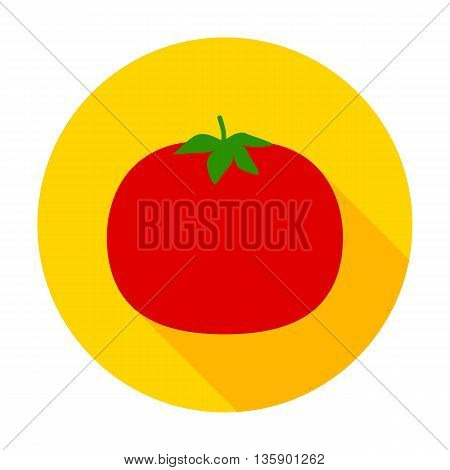 Tomato flat circle icon.Vector illustration of fresh vegetable food.