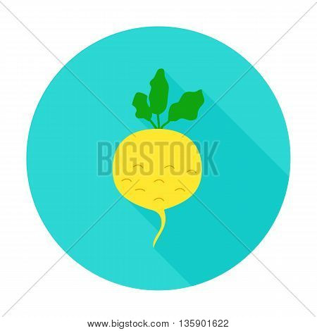 Turnip flat circle icon. Vector illustration of fresh vegetable food.