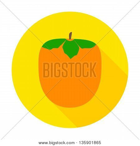 Mango flat circle icon. Vector illustration of fresh fruit food.