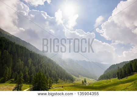 Valle D'aosta, Italy: Meadows, Woodland And Mountain Range