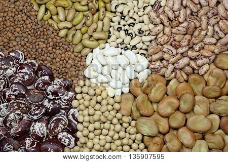 Top view of a variety of colorful soy bean lentil and broad beans