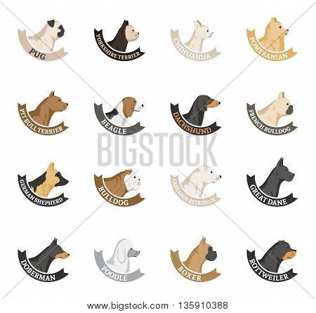 Vector dog breeds icons collection isolated on white. Dog icons collection for cynology dog club pet clinic and pet shop.