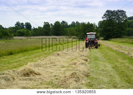 Old red tractor on green agriculture meadow