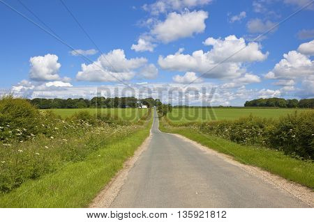 Yorkshire Wolds Landscape In Summer