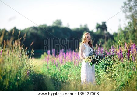 Beautiful young woman over blooming lupines with bunch of flowers in hands, sunset