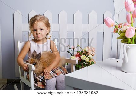 Beautiful little girl playing with rabbit.Blue-eyed blonde.White chair.Children's room. Happy small girl portrait.