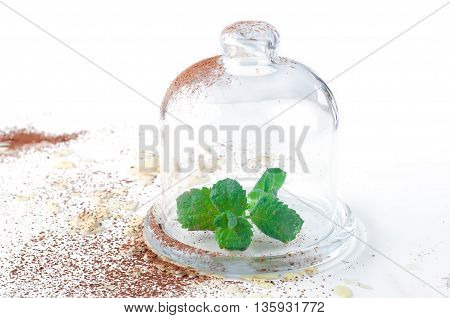 fresh mint sprigs in clear glass vase