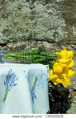 Bouquet of yellow tulips in glass vase lies on side on embroidered tablecloth on sunny day on rock background