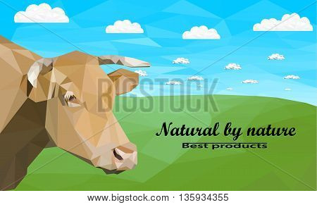 The head of a cow against a background of meadows . Polygonal vector illustration