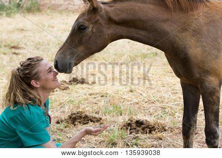 Female Veterinarian feeding a horse on a farm
