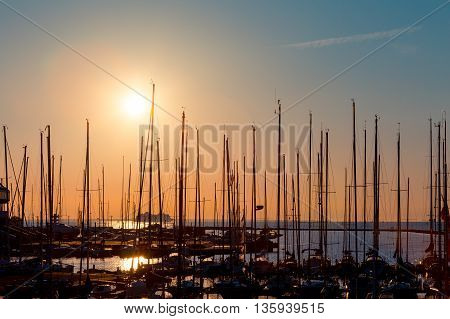 Rows Of Boats Mast