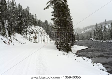 Winter snow covered road through the center of Yellowstone National Park