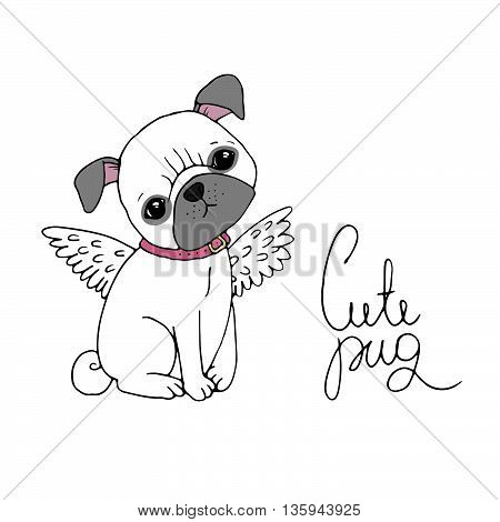 Cute Pug. Dog. Hand drawing isolated objects on white background. Vector illustration.