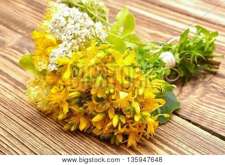 Hypericum flowers and yarrow flowers on wooden background
