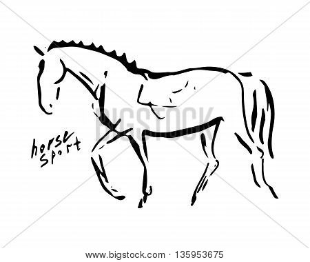 The image of a horse from lines on a white background. Abstract image - a symbol of equestrian sport (dressage). Vector illustration