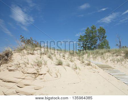 Sand Dunes Landscape at Ludington State Park in Michigan
